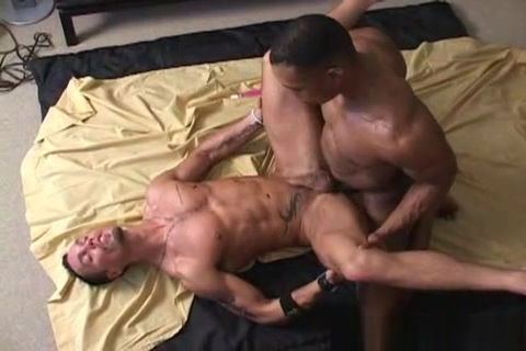 Lincoln And Fox porn ultra high quality porn videos eporner 3