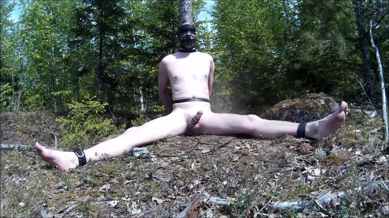 Electro torture in the forest. Nude ladies showing pussy