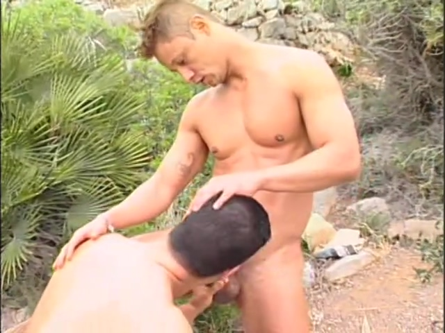 Beach Boys Pounding - Pacific Sun Entertainment naked men and sex