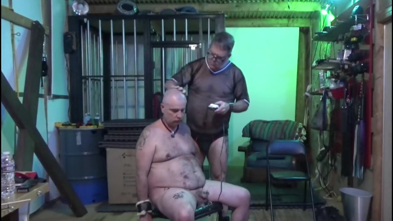 Grooming Dog Muksihs - Head Shave - Hair Cut Sexy brazilian boobs
