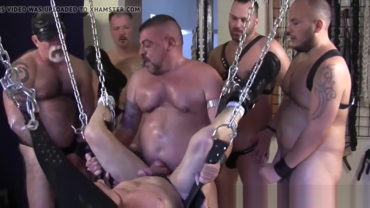 Hoisted bear barebacked in gangbang by guys Jessica ultra grannies