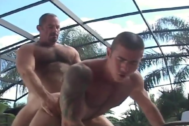 Poolside Bears porn star stocking archives