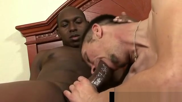 Glack thug getting his massive dick sucked hard gaypridevault fat lesbians strapon dildos