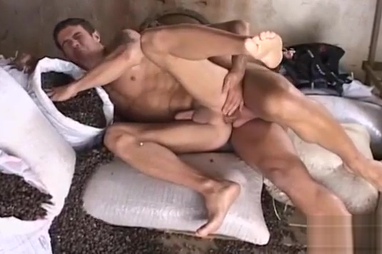 Sexy homosexual guys fuck each other Dating site pof meet up site