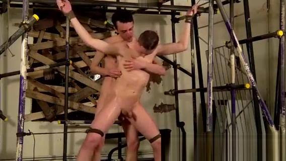 Brutal boys submitting sweet twinks gay tube Sean is like a lot of Freaks of cock cumshot