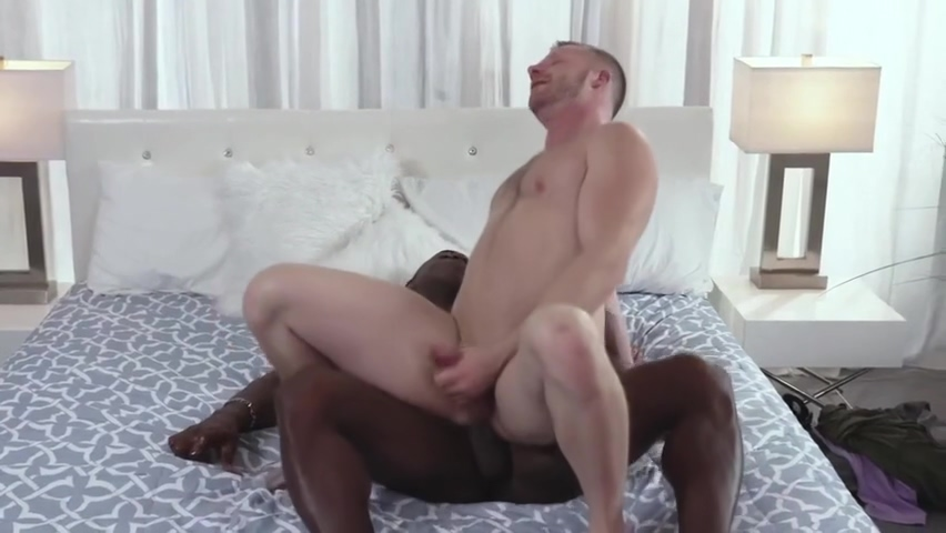 AARON TRAINER & BRIAN BONDS - MY daddy plowed YOUR daddy - NM Adult web site business turnkey