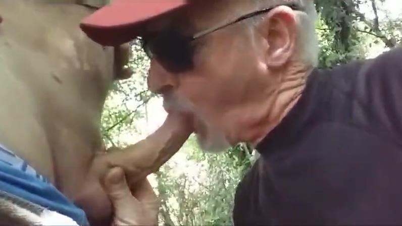je suce une tres bonne queue dans le bois Pason porn