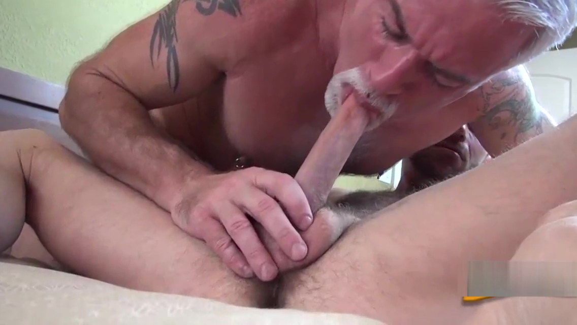 Older bear pounds cub raw Babe Steals Their Routine then Punished