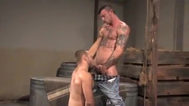 Tattooed gay studs in a barn sex game videos interactive