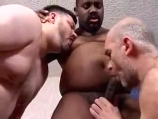 Trio chubby and 2 bears Hot erotic sex at first night