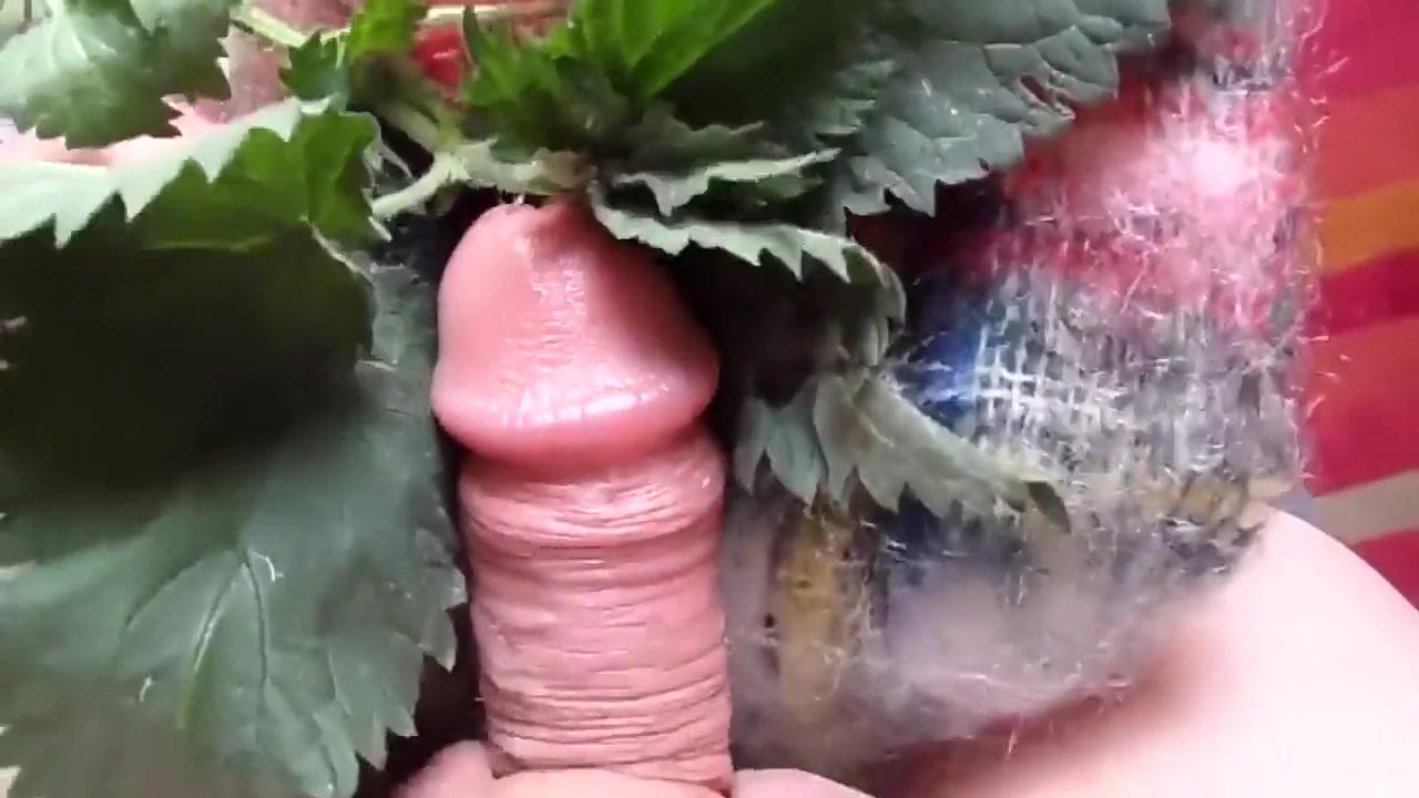 Stinging Nettle and Mohair Masturbation 7 Amateur bikini shots
